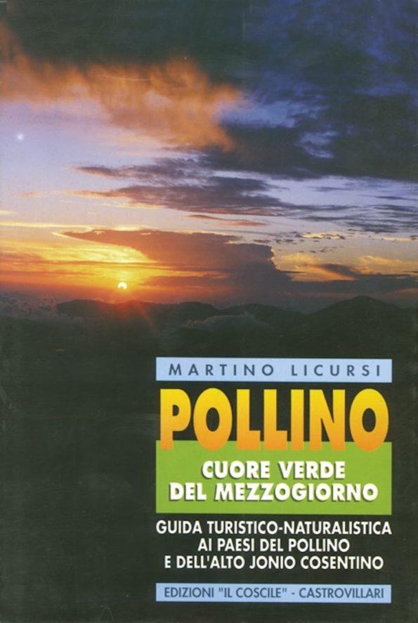 Libro-LICURSI-1.jpg