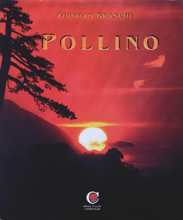 Libro_Pollino_Braschi-1.jpg