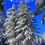 Apollinea – Gennaio-Febbraio 2021 – Download_Pagina_01